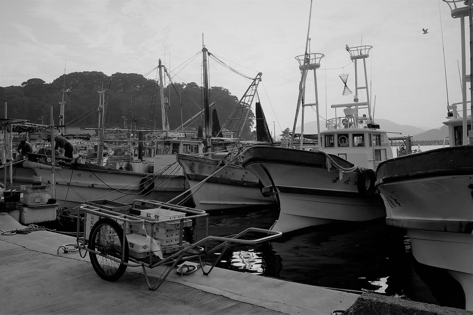 8月 雑賀崎漁港