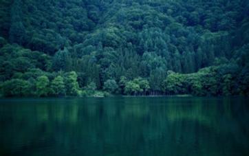 北アルプス水